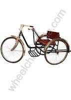 Handicap Tricycle