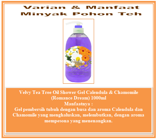 Minyak Pohon Teh (Tea Tree Oil)
