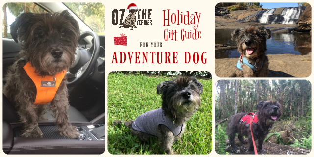 2016 Holiday Gift Guide for your Adventure Dog