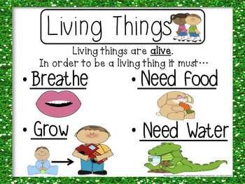 Living And Non Living Things on Needs And Characteristics Of Living Things 1