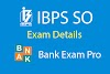 Institute of Banking Personnel Selection - (IBPS SO):