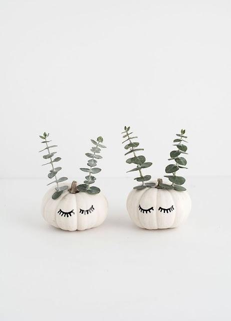 citrouille eucalyptus