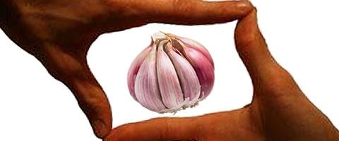 Manfaat Bawang Merah Bagi Kesehatan Dan Kecantikan