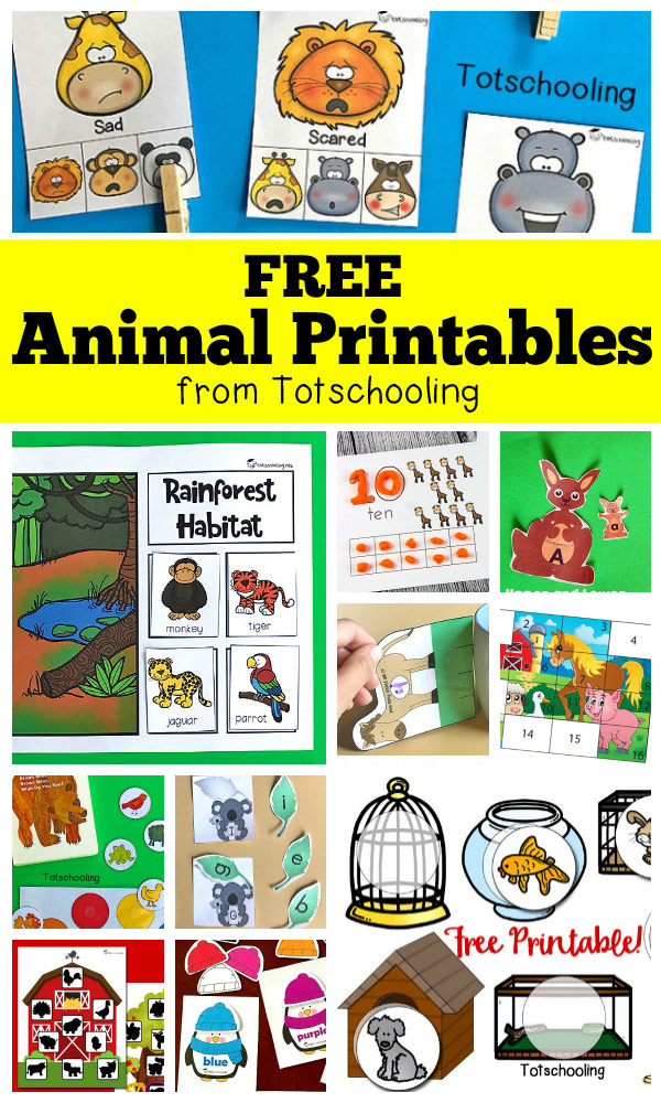 FREE Animal Printables For Preschool Totschooling - Toddler, Preschool,  Kindergarten Educational Printables