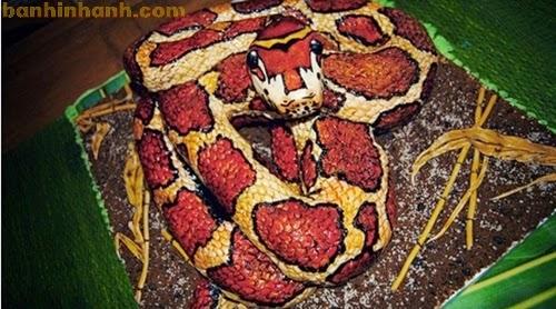Những chiếc bánh sinh nhật hài VL, con rắn