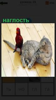1100 слов попугай сидит на хвосте кошки, наглость 28 уровень