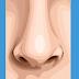 Tutorial Membuat Gambar Vektor Bagian Hidung Menggunakan Photoshop