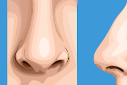 How to Draw a nose Image Vector using Photoshop