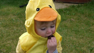 easter egg hunt, Easter, chick, fancy dress