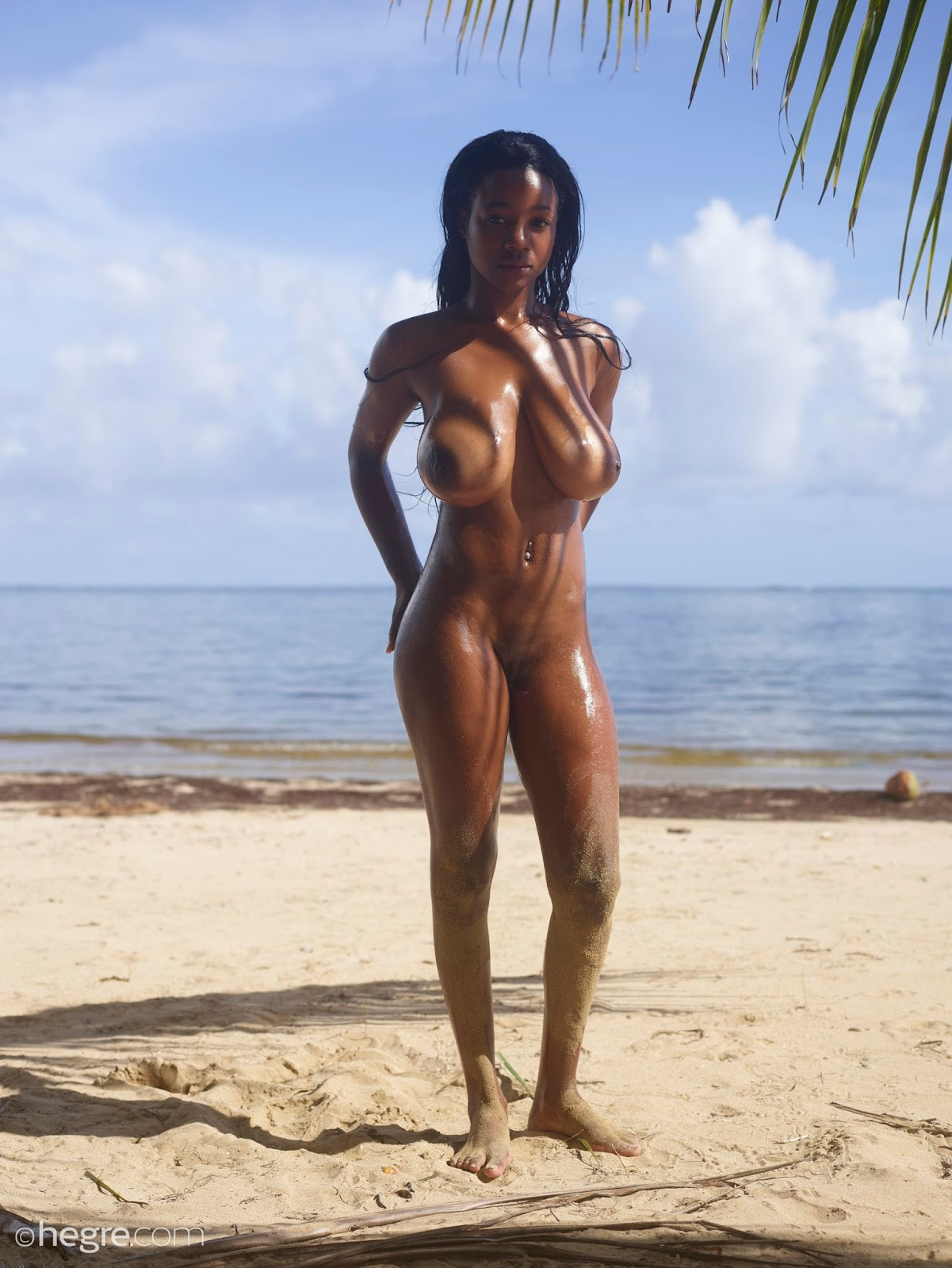 Nude Ebony Beach
