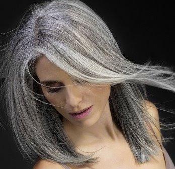 Corak Warna Gothic Gray