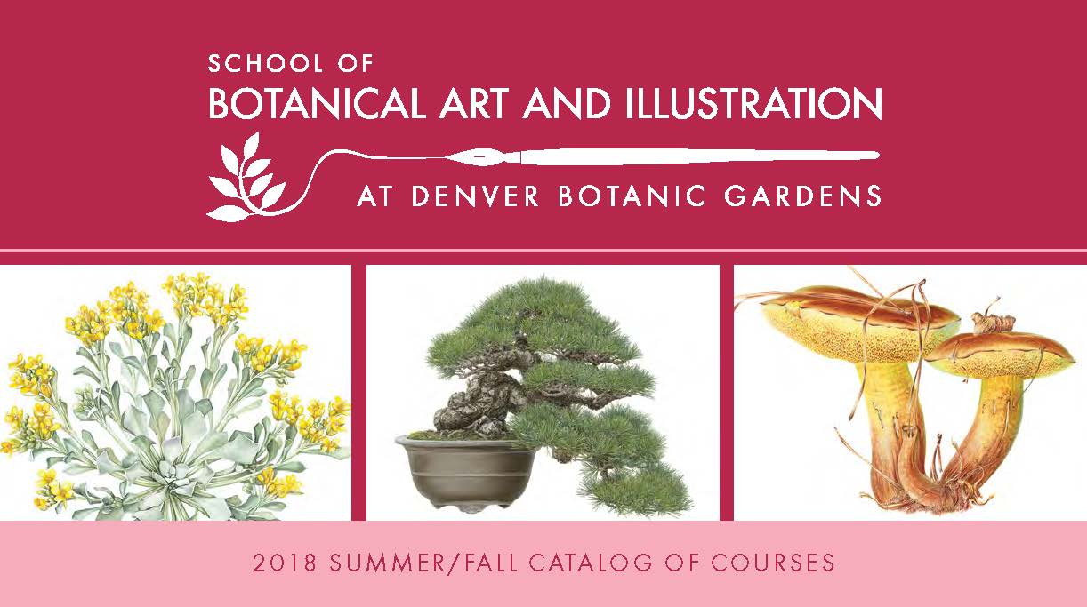 2018 Summer/Fall Courses