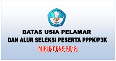 Batas Usia Pelamar dan Alur Seleksi Peserta PPPK Mirip CPNS 2018