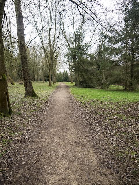 Path Through Hazeley Wood