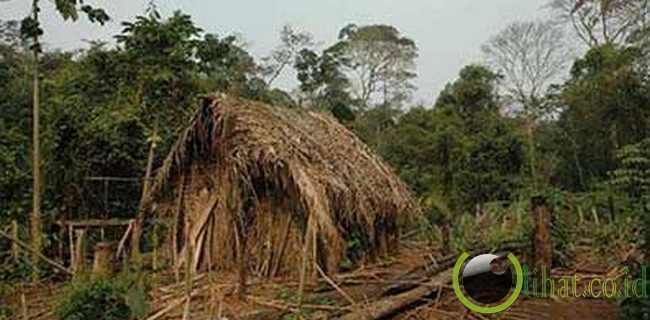 Orang yang Hidup di Dalam Lubang Suku Pribumi