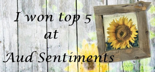 Top 5 Aud Sentiments