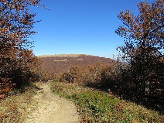 Zejście z Krzemieńca z widokiem na Wielką Rawkę.