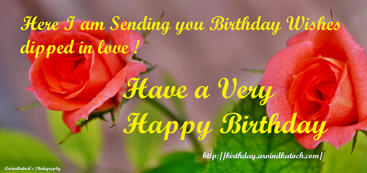 Birthday cards for her true picture true picture hd birthday cards dipped love birthday card rose card her bookmarktalkfo Image collections
