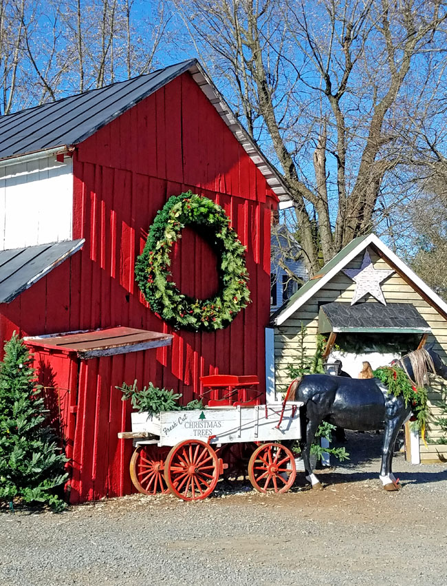 red barn decorated for Christmas with big wreath and horse drawn sleigh