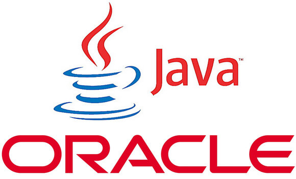 Install Oracle JDK $java_version on Linux