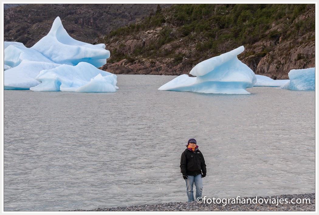 Icebergs en la orilla del lago Grey