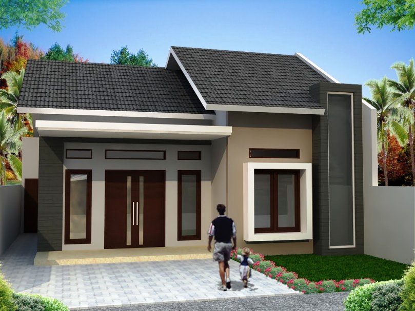 Small house design