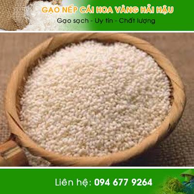 Gạo nếp cái hoa vàng tại Hải Hậu Nam Định