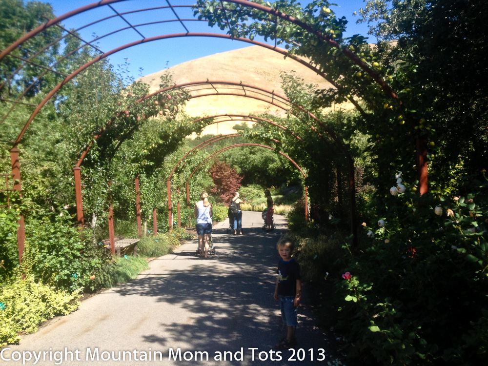 Red Butte Gardens Salt Lake City Utah Mountain Mom And Tots