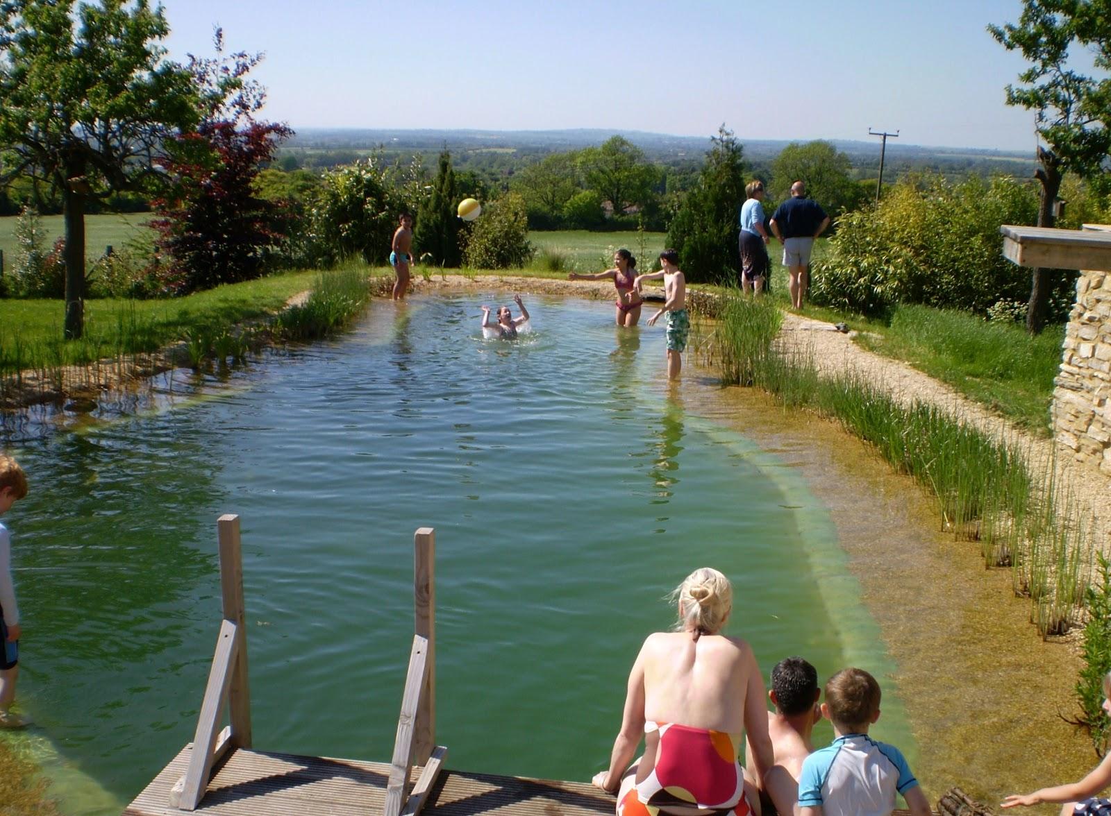 Fernando ruz piscinas ecol gicas datos de presupuesto - Presupuestos para piscinas ...