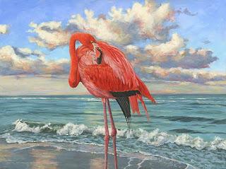 aves-vistas-playas-cuadros