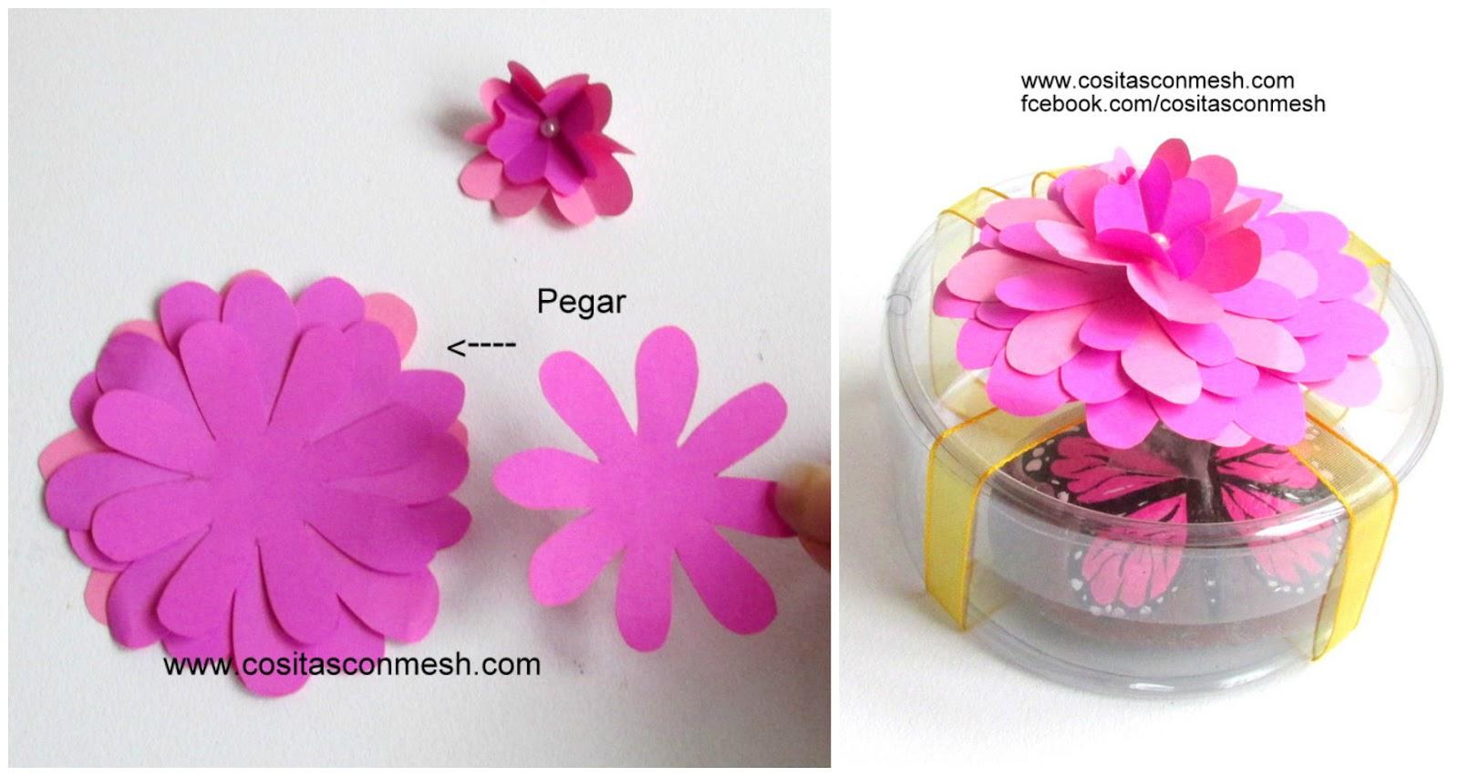 Cuál de las 2 flores es tu favorita ?