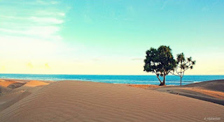 Padang Pasir Pantai Oetune