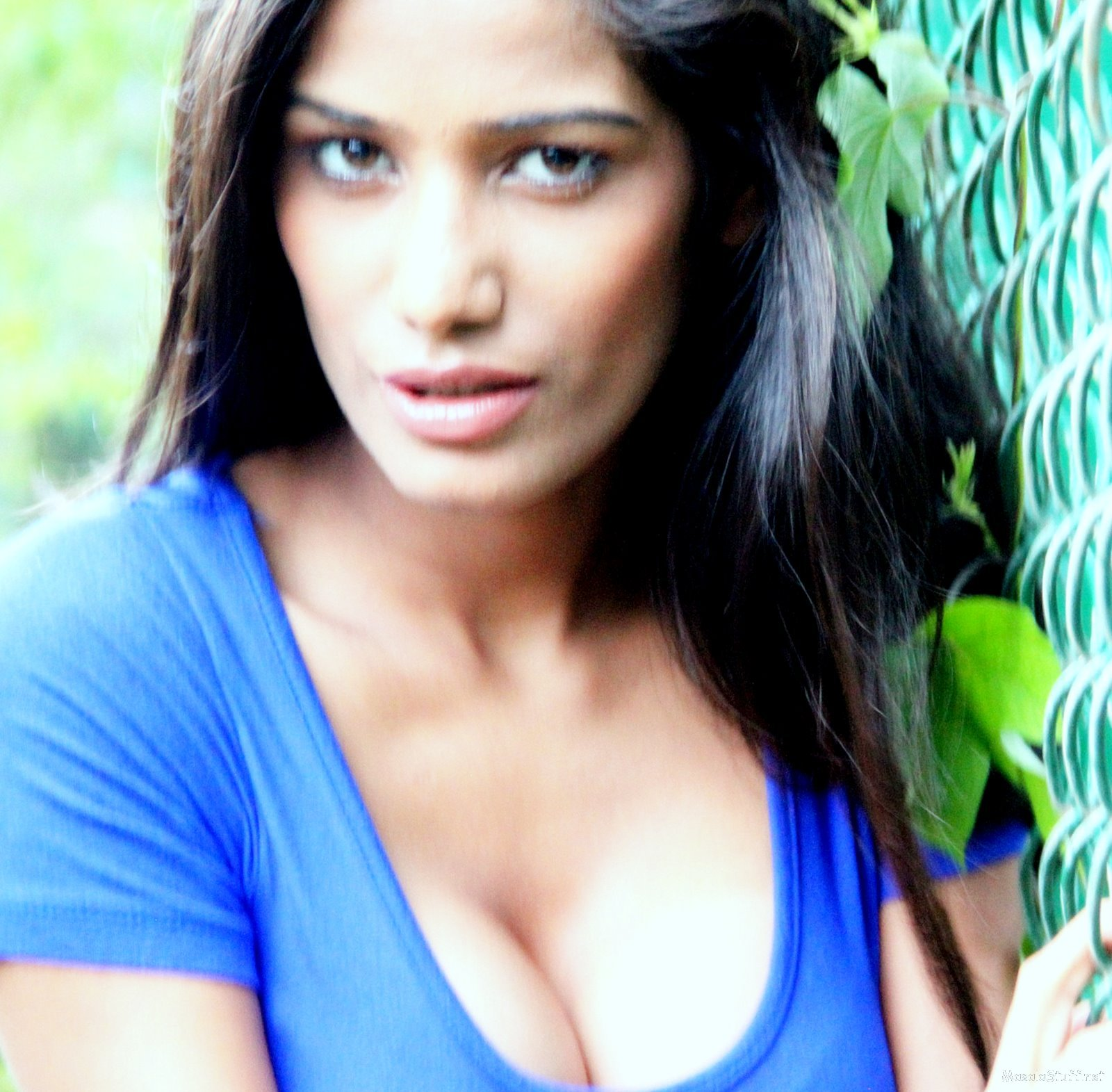 High Quality Bollywood Celebrity Pictures: Poonam Pandey ...