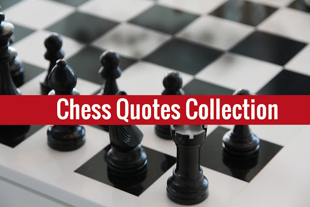 400+ chess quotes collection about sacrifice, funny, world champions, epic, life