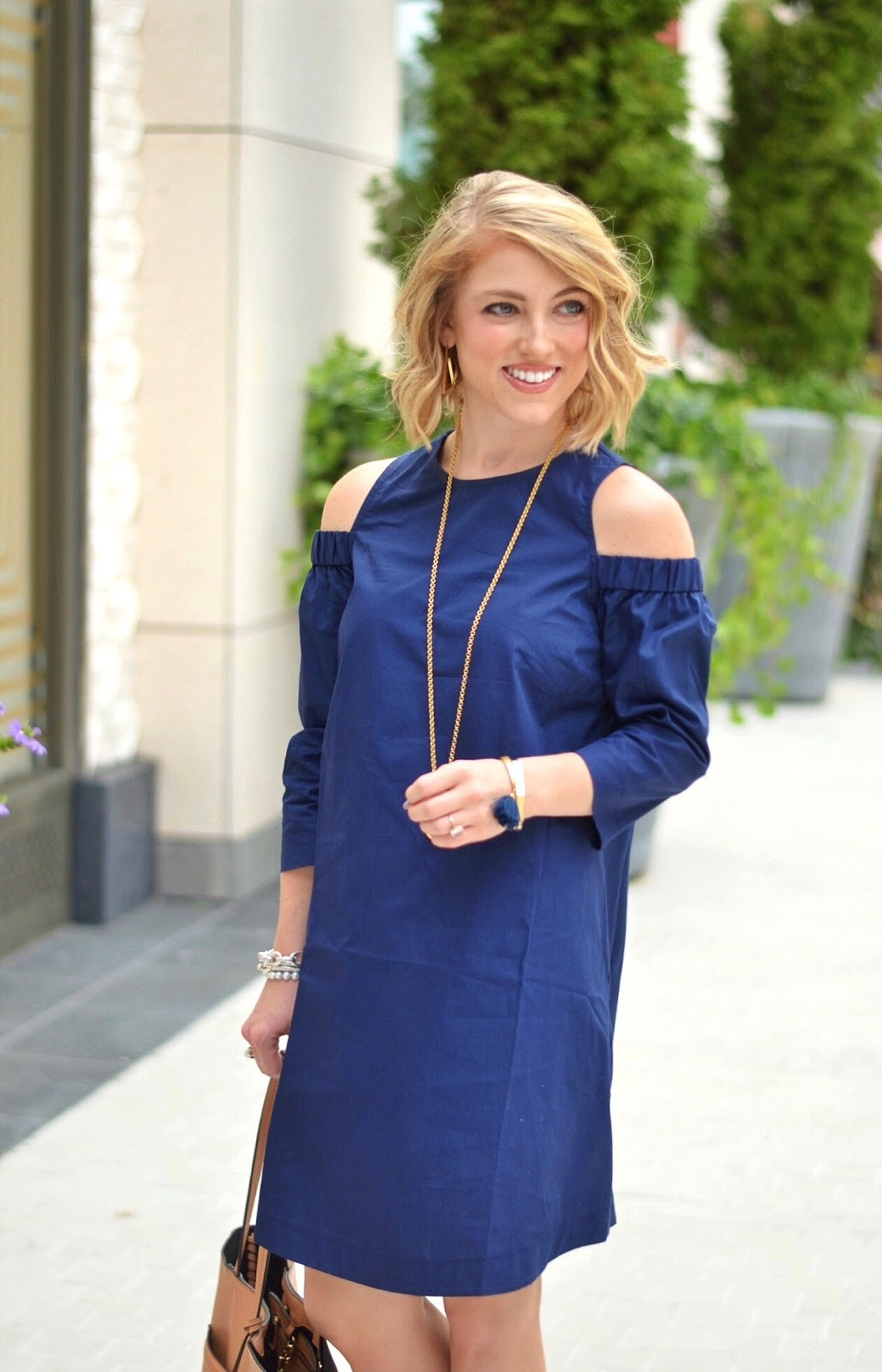 Little Navy Dress