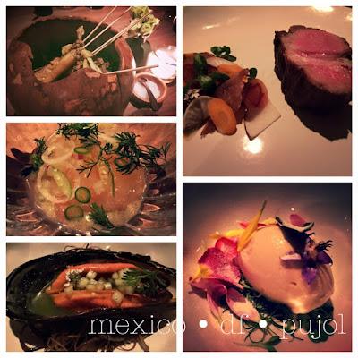 005 Latin America's 50 Best Restaurants 2016 number 5 pujol chef enrique olvera / © by chef alex theil