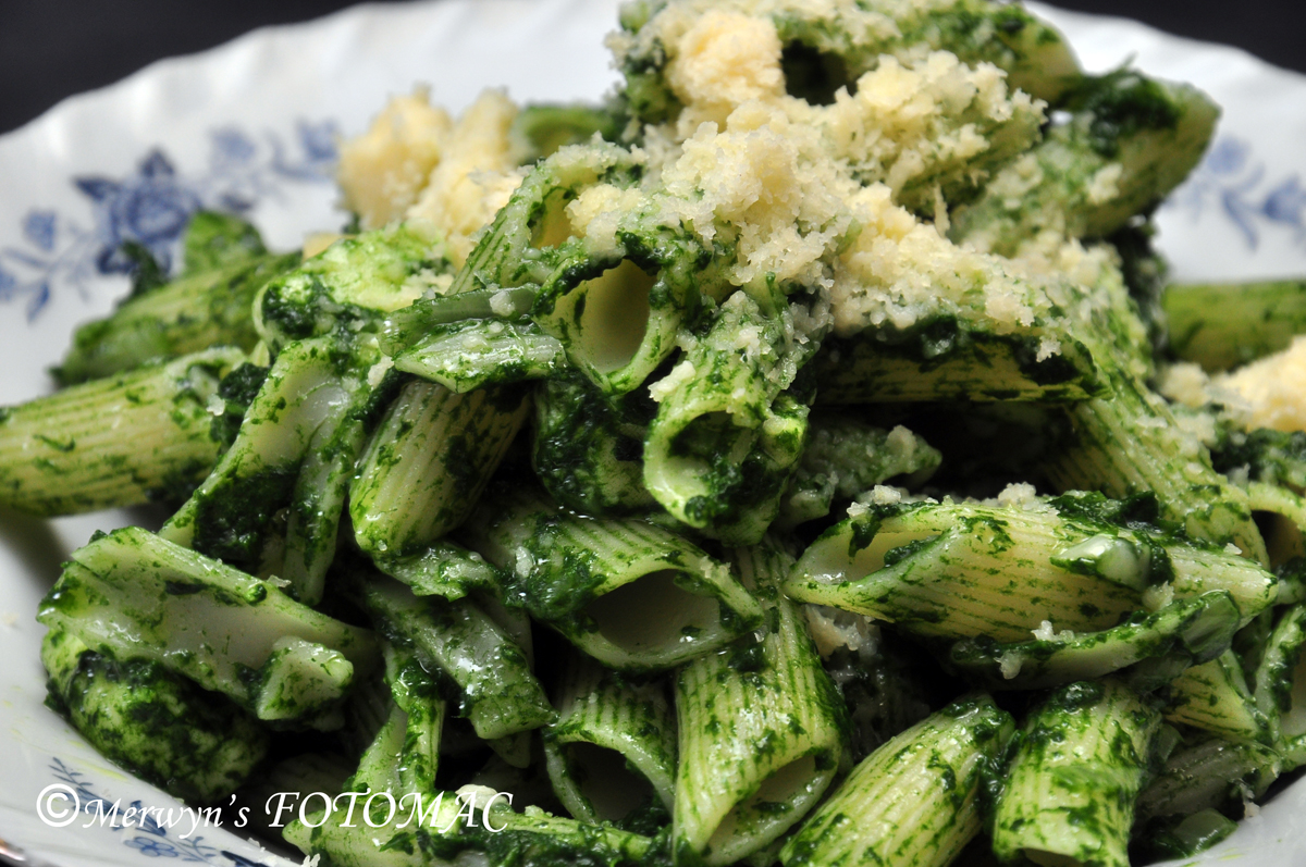 spinach cottage cheese pasta hilda s touch of spice rh hildastouchofspice com Cottage Cheese and Spinach Pasta cottage cheese pasta salad recipes