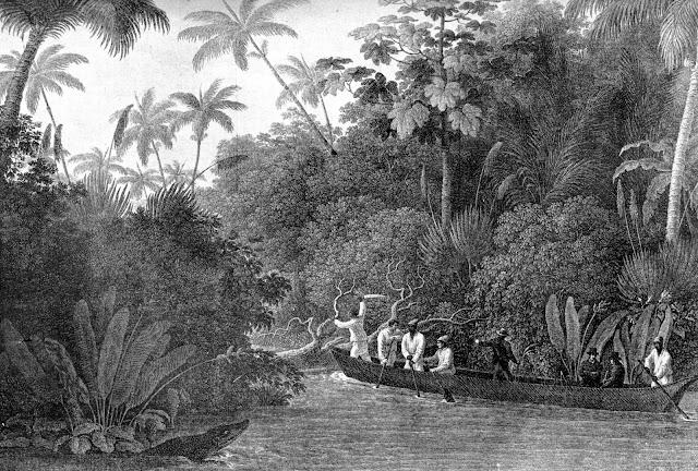 Viagem por um braço do rio Doce [in Wied-Neuwied, Maximiliano, Viagem ao Brasil, p.155].