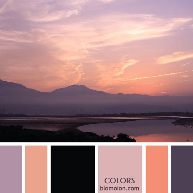variedad_en_color_paletas_colores_3c