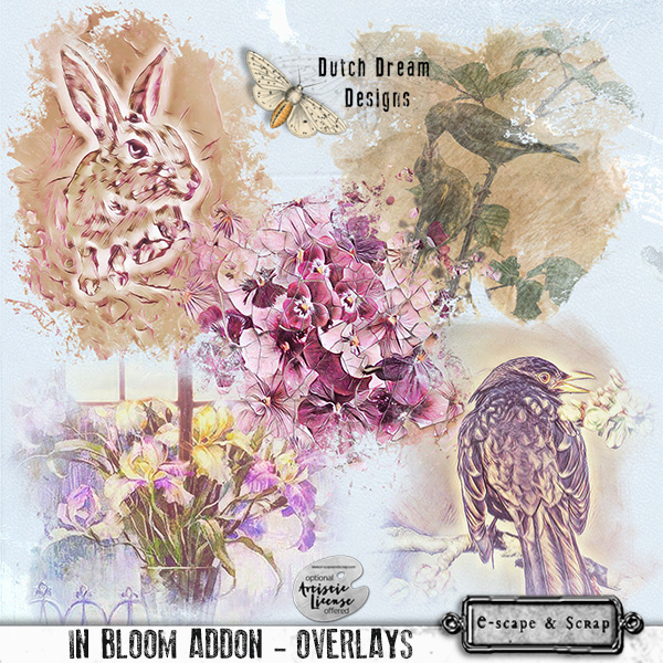 IN BLOOM ADDON OVERLAYS