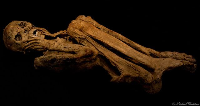 mumi paling seram di dunia