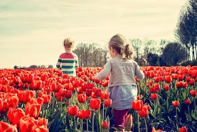 novella, irodalom, tavasz, betegség, gyermekkor, Élet, tavaszi zsongás, Kádár Sára Hajnalka