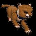 Tabby Cat Cub - Pirate101 Hybrid Pet Guide