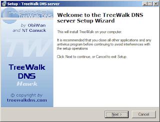 Setup Caching DNS Server using TreeWalk