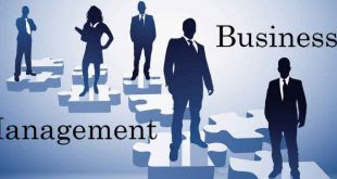 TYPES OF BUSINESS MANAGEMENT DEGREES – THE 4 MOST POPULAR BUSINESS MAJORS