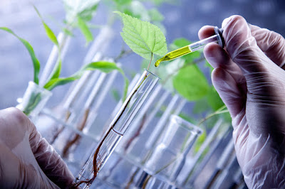 Portugal Offers Support for Biotechnology Activities in Nigeria
