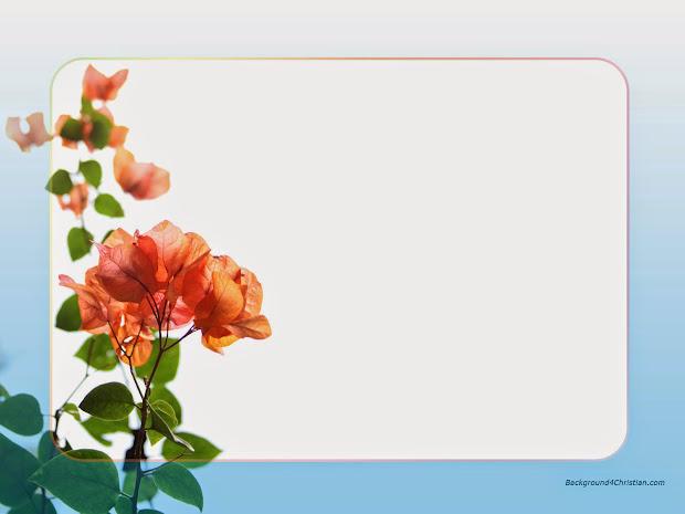 Flower Wallpaper Border Hd Wallpapers