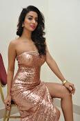 Heena Panchal sizzling at Thikka audio-thumbnail-2