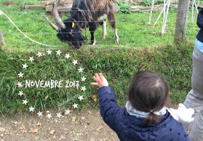Document your life : retour sur mon mois de novembre