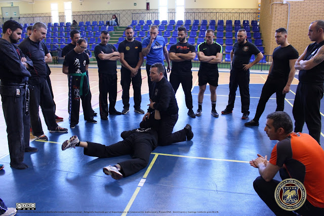 IPSA DEFENSA PERSONAL POLICIAL CURSO I.P.S.A. SEMINARIO GUARDIA CIVIL POLICIA MILITAR PENITENCIARIA SEGURIDAD ASOCIACION INTERNACIONAL IPSA INTERNATIONAL POLICE AND SECURITY ASSOCIATION IPSA INTERNACIONAL CURSOS SEMINARIOS ESPAÑA